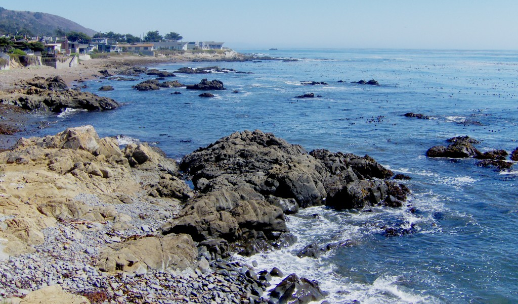 Homes For Sale In Cambria Ca With Ocean View